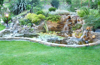 Pond & Water Feature Installation